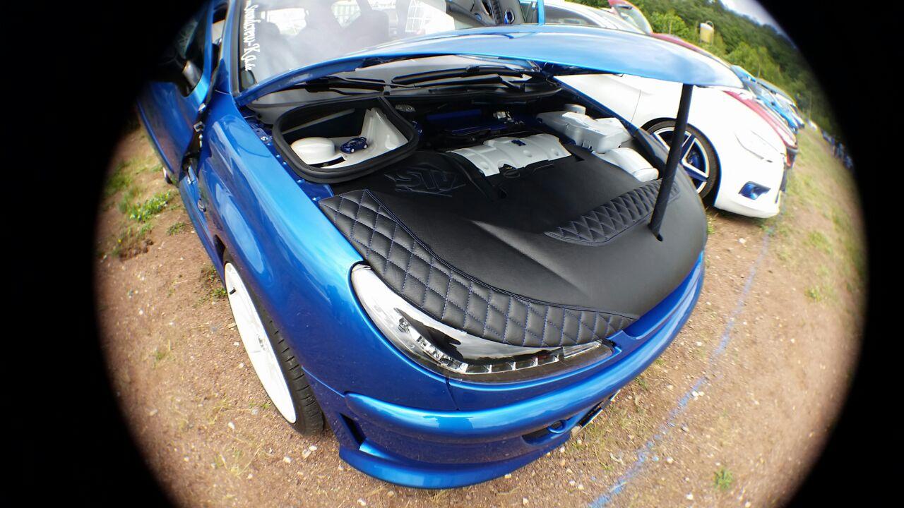 Blue Lion 206 - SW Car Interieur